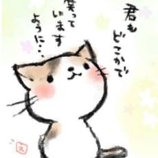 迷子の子猫ちゃんのアイコン画像