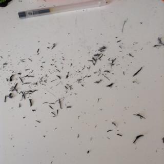 【けしカス】イラストによりけしカス大量発生している方と繋がりたい。絵描きさんならオールオーケー
