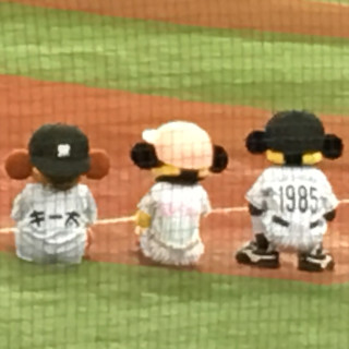阪神タイガース好きな人!