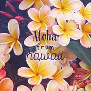 ハワイアン大好き♡