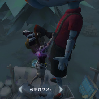 もち丸/蘭探偵