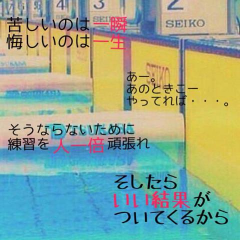 水泳人集まれ〜